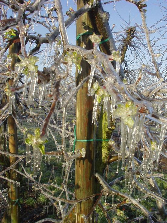 Frostschutzberechnung 2