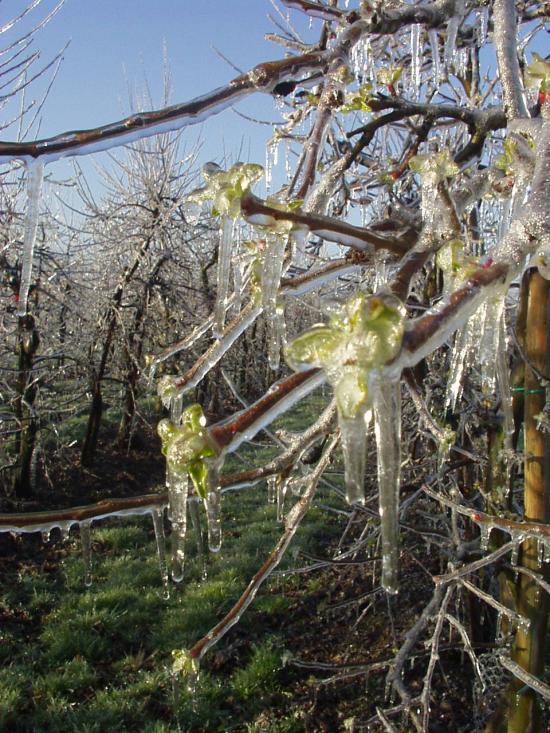 Frostschutzberechnung 3