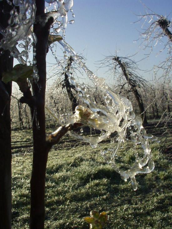 Frostschutzberechnung 4
