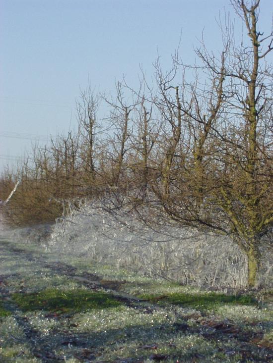 Frostschutzberechnung 5