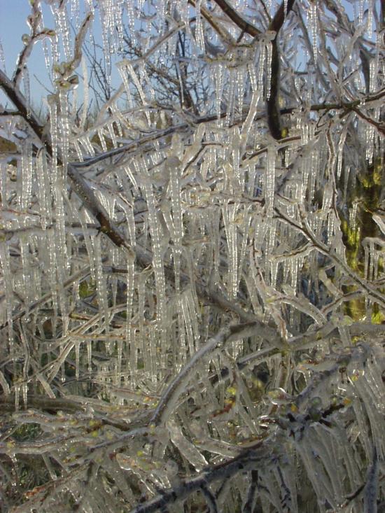 Frostschutzberechnung 6